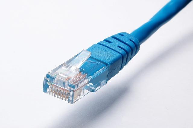 síťový kabel zná každý