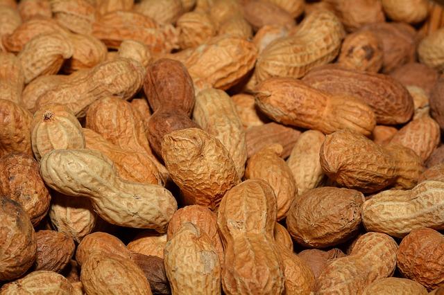 arašídy ve skořápce